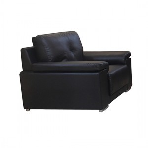 Ranee Bonded Leather And PU 1 Seater Sofa In Black