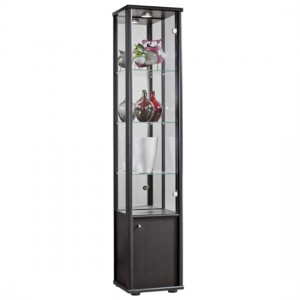Selby 1 Door Display Cabinet In Black With Base Unit And 4 Shelves
